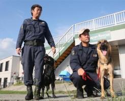 災害救助犬のホープと協会トレーナーの岡隊員、安隨隊員(引用・産経WEST)