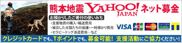 熊本地震YAHOO!ネット募金