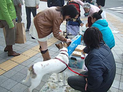 20141129街頭募金ボランティア