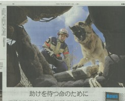 産経新聞②