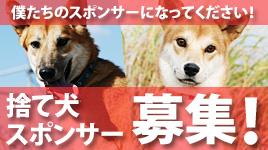 20151202hogo_banner