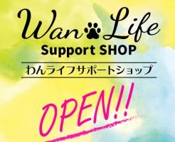 banner_open