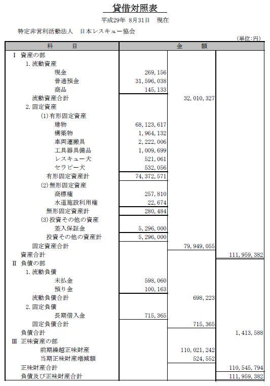 平成28年度 日本レスキュー協会貸借対照表