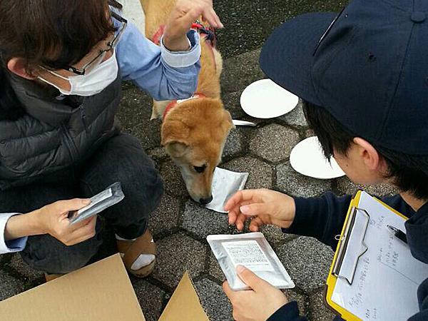 日本レスキュー協会×災害被災地支援活動