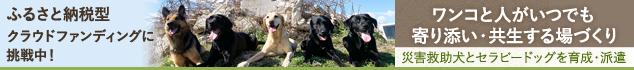 【第2弾】九州圏での災害に備え、災害救助犬・セラピードッグの育成・派遣拠点を佐賀県に作りたい!