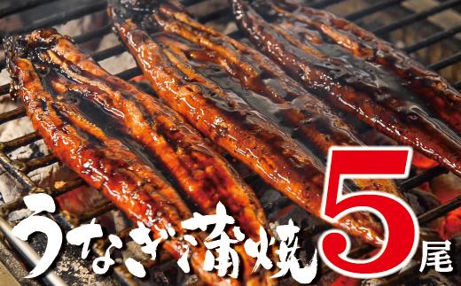 柳屋の鰻蒲焼 5尾