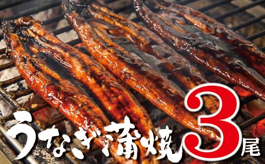 柳屋の鰻蒲焼 3尾